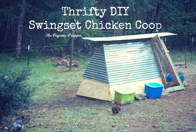Make a Thrifty DIY Swing-set Chicken Coop