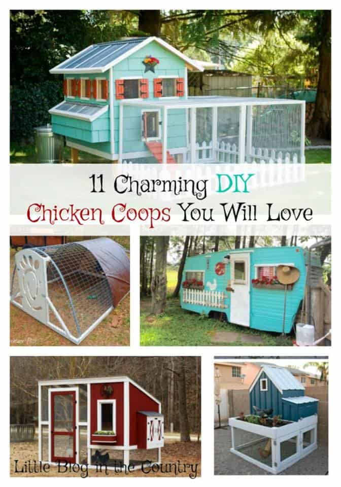 11 Charming DIY Chicken Coops You Will Love