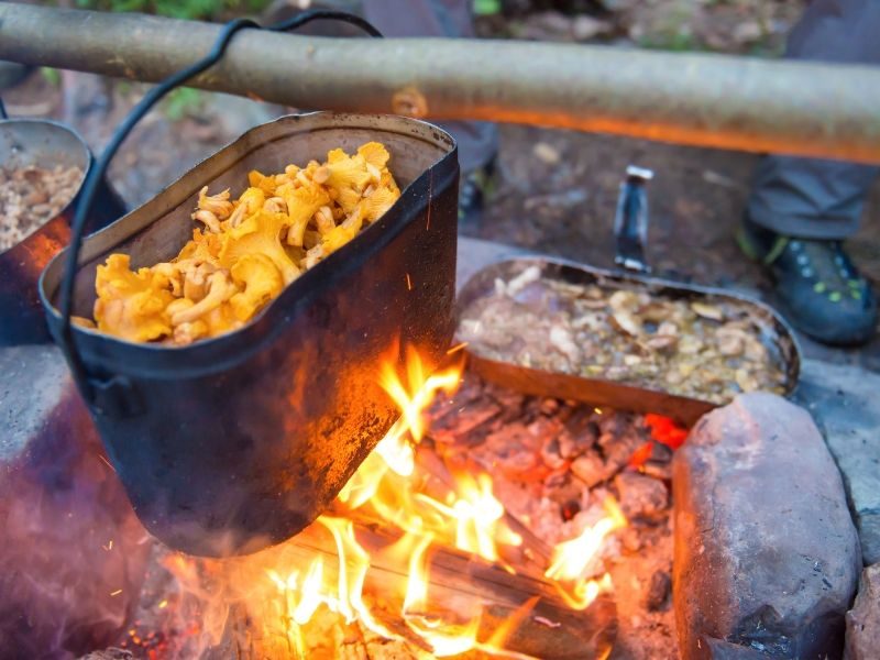 Kettle full of mushrooms cooking on a campfire