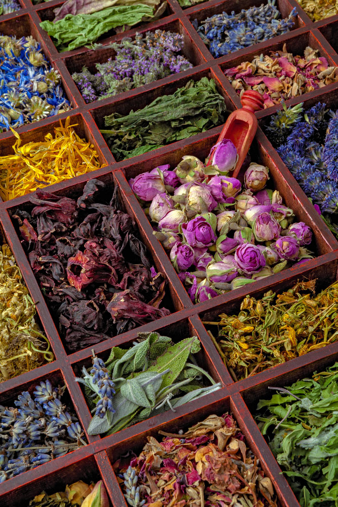 Best Immune Boosting Herbs for Colds and Flu