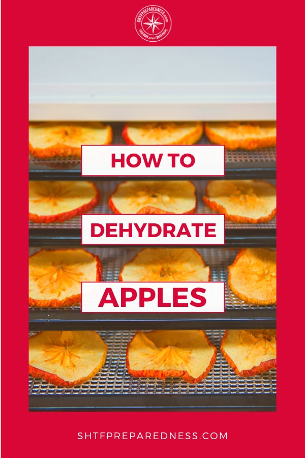 Once you know how to dehydrate apples you can snack on them, add them to food storage or pack them up in your kids lunches.