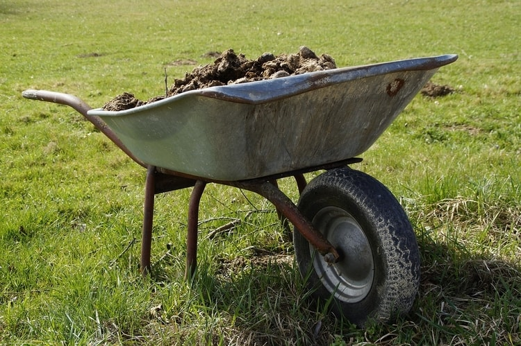 There are a lot of benefits to adding manure as one of your key organic compost ingredients.