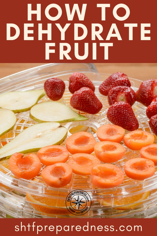 Food preservation is a lost art that boosts health, saves money and keeps you prepared. Learning how to dehydrate fruit is an essential preparedness skill.
