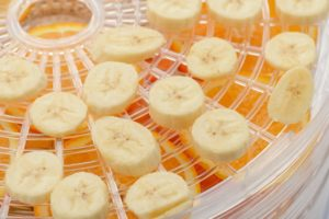 close-up of banana slices on a dehydrator tray