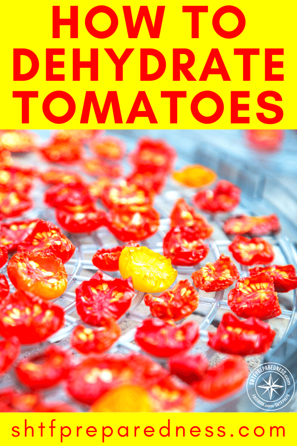 If you know how to dehydrate and preserve tomatoes, they can be a powerful asset for preparedness.