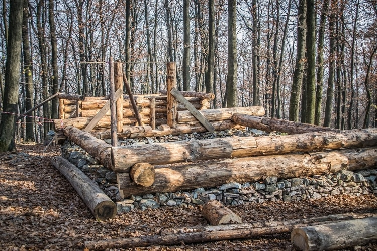log cabin under construction with tree logs
