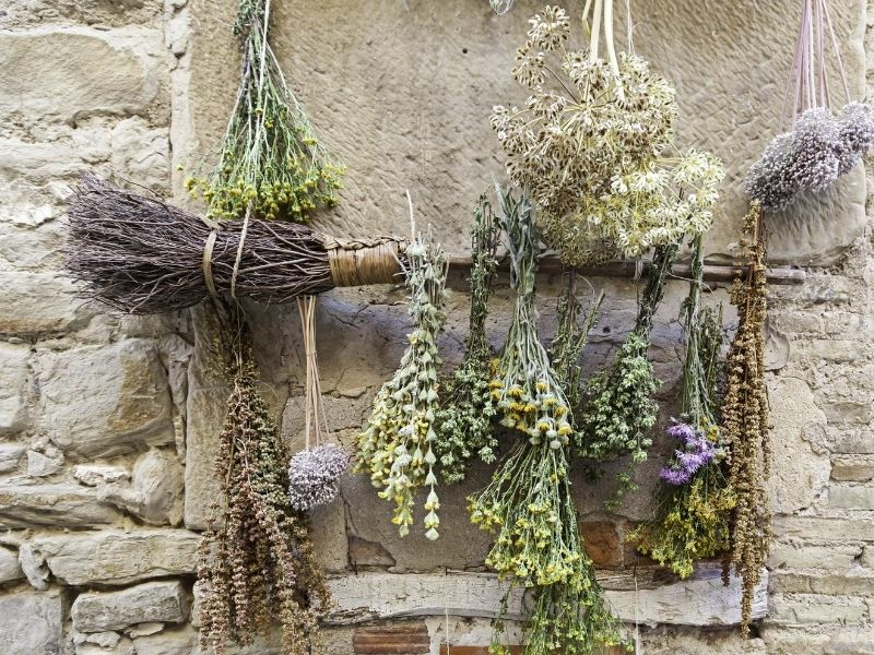 Herb bunches hung out to air dry