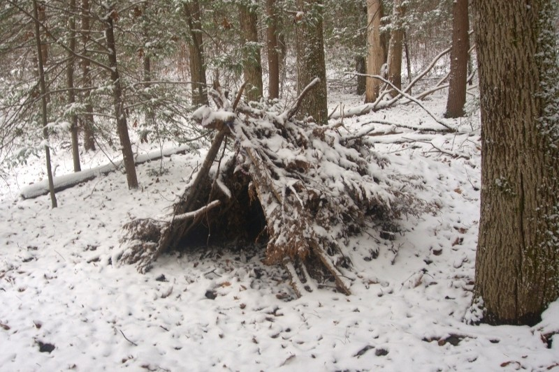 lean-to winter survival shelter