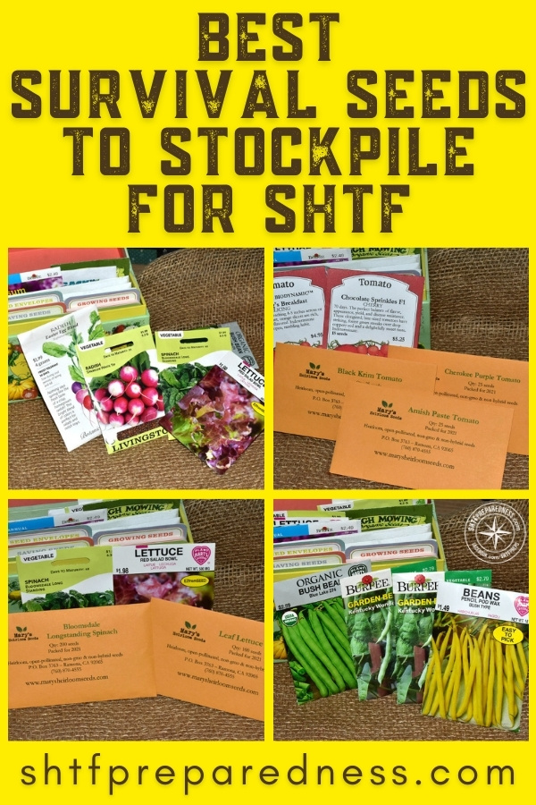 Make sure you've got these best survival seeds to stockpile in your preps! Some seeds are easier to grow, and better suited for a SHTF situation, than others.