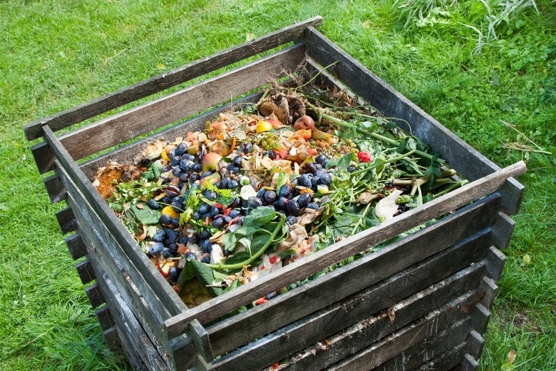 compost for the garden