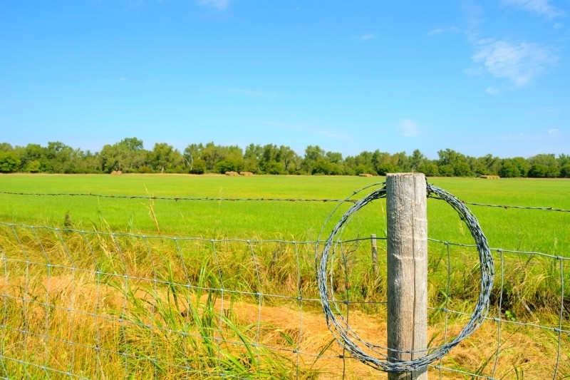 Iowa: #4 best state for homesteading