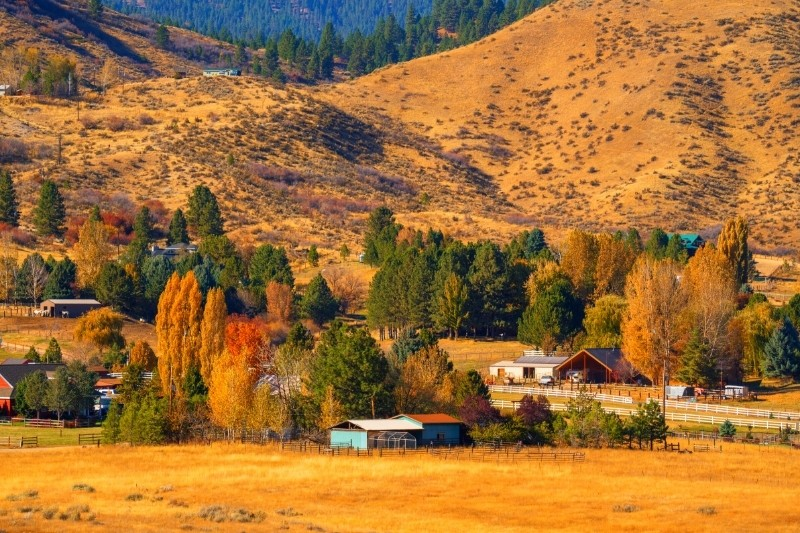 Idaho: #1 best state for homesteading